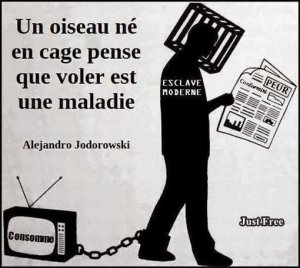 tv-esclavage